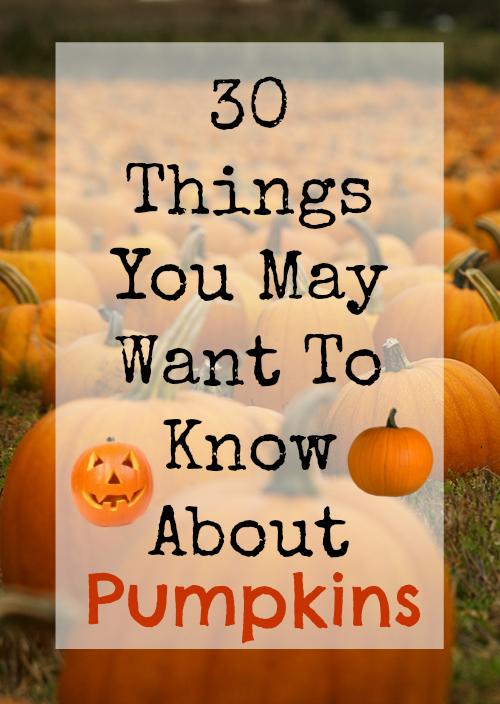 Pumpkins- 30 Things